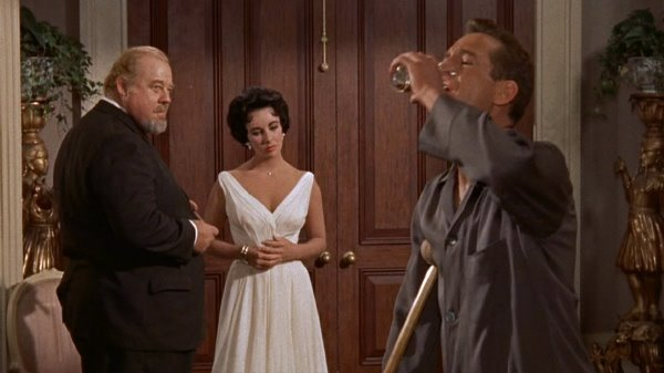 an analysis of the characters in the play the cat on a hot tin roof by tennessee williams Reflect on how 'cat on a hot tin roof' by tennessee williams, could be considered a radical play that pushes  exhibited by williams' characters are the.
