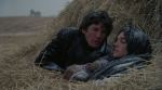 Days of Heaven (22)